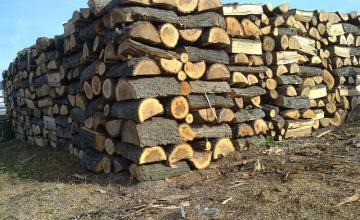 Продажба на дърва за огрев в област Бургас