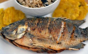 Продажба на пържена и печена риба в София