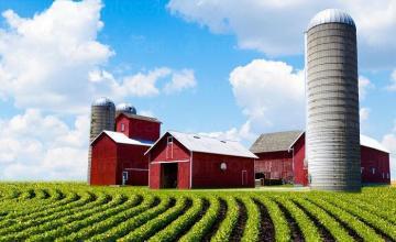 Продажба на земеделска продукция в община Аврен - Кооперация в Аврен