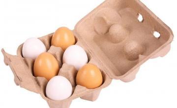 Производство и търговия с яйца в Пловдив