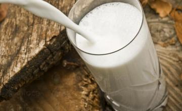 Производство и търговия с мляко в Сливо поле