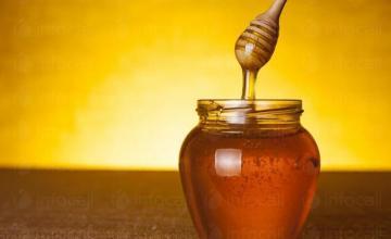 Производство мед Шумен и Варна