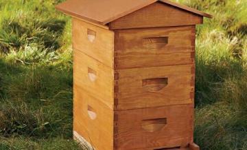 Производство на пчелни кошери в област Сливен