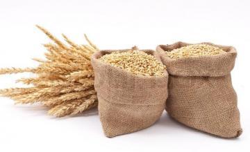 Съхранение на зърно във Враца