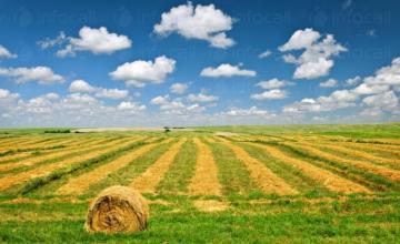 Селскостопански услуги в Гарван-Ситово
