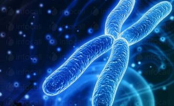 Специализирани ДНК изследвания в Стара Загора
