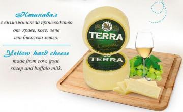 Търговия млечни продукти в Севлиево - ДЕАРИ ФУУД БЪЛГАРИЯ АД