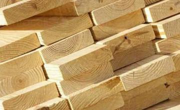 Търговия с дървен материал в София-Център - Дърводобив София-Център