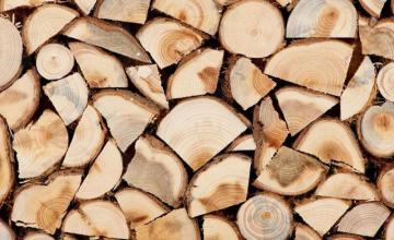 Търговия с иглолистна и широколистна дървесина Чирпан