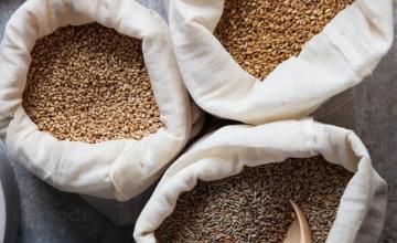 Търговия със селскостопанска продукция в Нови Пазар
