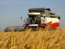 Търговия селскостопанска продукция в община Добрич