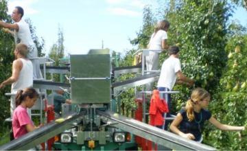 Търговия селскостопанска техника в Бургас - Мибу 17