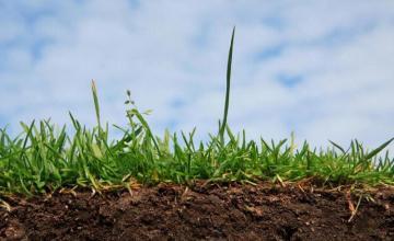 Цени за изпитване и анализ подобрители на почви в Пловдив - ЛАБОРАТОРЕН КОМПЛЕКС ЗА ИЗПИТВАНЕ КЪМ АУ