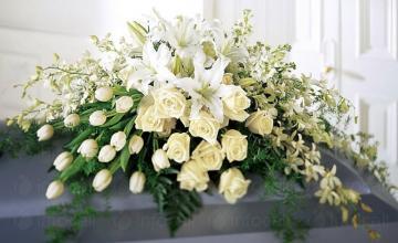 Цялостно организиране на погребения в Пловдив - Погребално бюро Тера Да