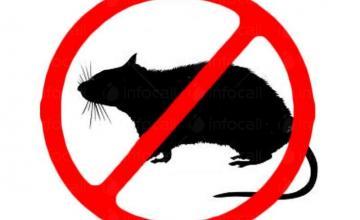 Унищожаване на вредни гризачи във Варна и Шумен - Кен  ЕООД