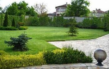 Вътрешно и външно озеленяване в Стара Загора