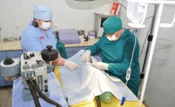 Ветеринарна хирургия Стара Загора - Вита Вери