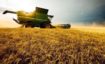 Зърнопроизводство в Долни Дъбник - Земеделски производител Долни Дъбник