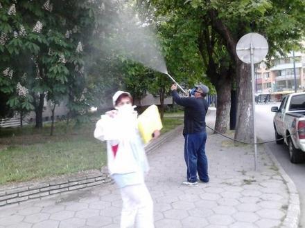 Дезинфекция в област Пазарджик - ДДД Пест Консулт