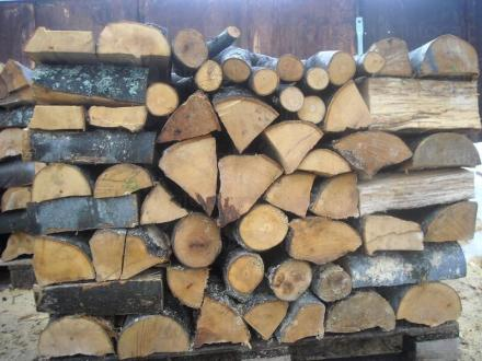 Добив иглолистна и широколистна дървесина Чирпан - БИ ЛЕС
