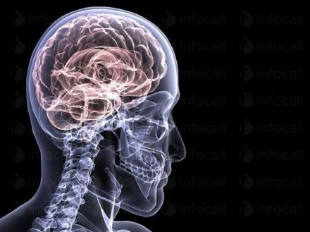 Електроенцефалография в Свищов - Доктор Любомира Първанова