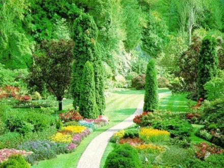 Изграждане на градини в Бургас - Озеленяване Бургас