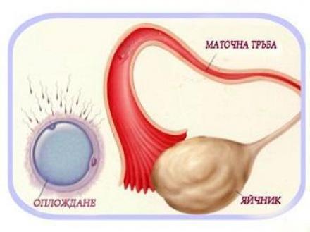 Лечение на стерилитет в София Банишора - Акушер-гинеколог София-Банишора
