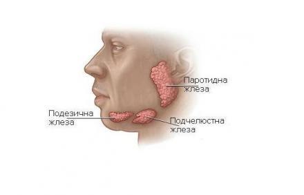 Лечение тумори на слюнчени жлези  - Професор д-р Спас Консулов