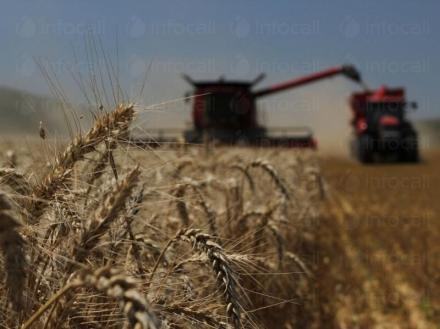 Обработка на земеделска земя в Царевец-Свищов - ППОК Изгрев 93