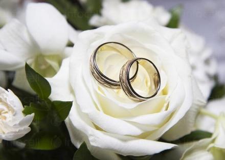 Организиране на сватбени тържества в Ботевград - Булспринг