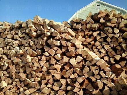 Продажба дърва за огрев Чирпан - БИ ЛЕС