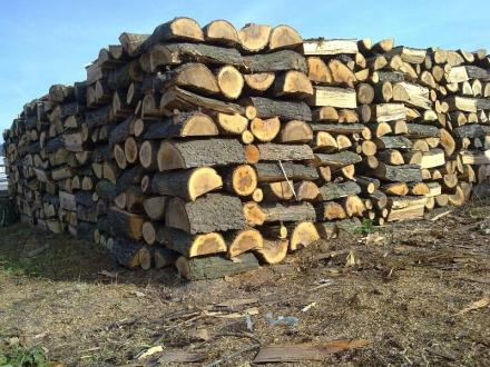 Продажба на дърва за огрев в област Бургас - Горпром Инвест