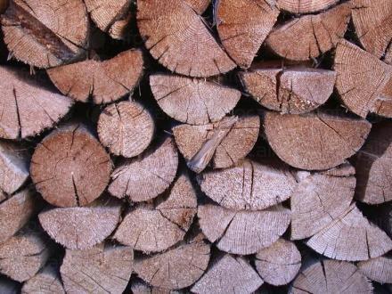 Продажба на дърва за огрев в област Ямбол - Палисандър - БГ