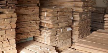 Продажба на дървен материал в Априлци - БАЛКАНДЖИИ