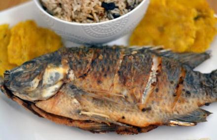 Продажба на пържена и печена риба в София - Жива риба София