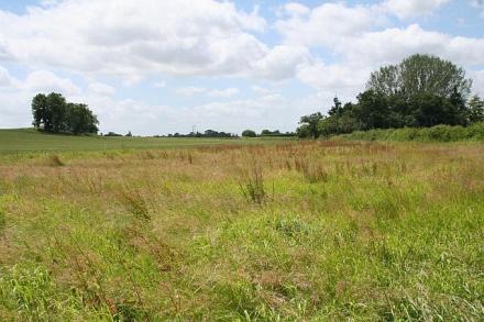 Продажба на земеделска земя в Русе - ЧСИ Милкана Македонска
