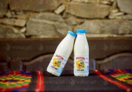 Производство айрян в община Ардино - Мандра Жълтуша