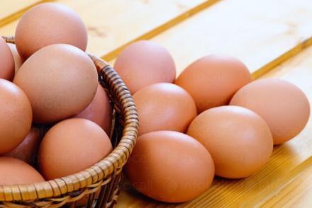 Производство и продажба на яйца за консумация Габрово, Севлиево, Трявна - ЕКО ИНВЕСТ 2008