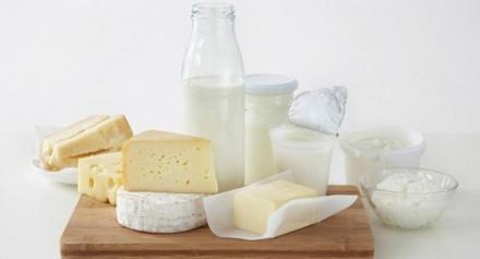 Производство на млечни продукти във Враца - Млечни продукти Враца
