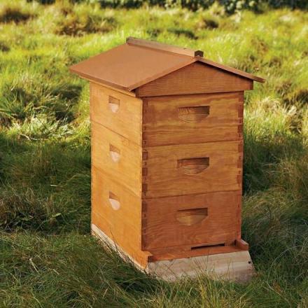 Производство на пчелни кошери в област Сливен - Палисандър - БГ