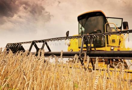 Реализация на земеделска продукция в община Аврен - Кооперация в Аврен