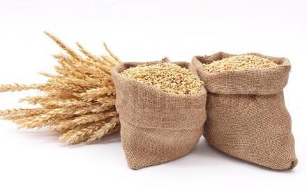 Съхранение на зърно във Враца - Консорциум Агробизнес АД